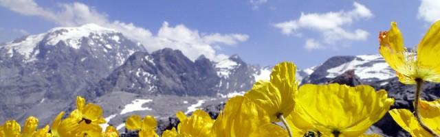 Auf nach Südtirol