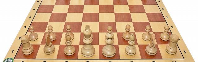 Sport und Bildung – Das Spiel der Könige