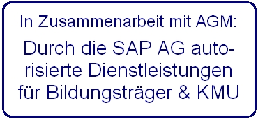 agm_sap dienstleistung